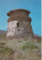 ISOLA DI CAPRAIA - TORRE DELLO ZENOBITO - VIAGGIATA 1991 - Autres Villes