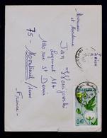 MAROC Algodon FRANCE Youssoufia Végetables Flora Gc4836 - Pflanzen Und Botanik