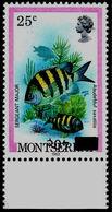 MONTSERRAT 1983 Fish Sergeant Mayor 40/25c MARG.INV.OVPT - Montserrat