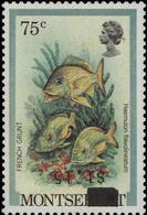 MONTSERRAT 1983 French Grunt Fish OVPT.1.15/75c (no Imp.) ERROR:INV.ovpt Wrong Stamp - Montserrat