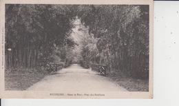 37 RICHELIEU  -  Dans Le Parc  -  Pont Des Bambous  - - Autres Communes