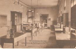 Ci02521 Romania Iasi University Morphology Laboratory Professor P Bujor Zoology Ichtyology Ca 1920 Photo Weiss - Rumania