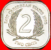 · QUADRANGULAR (1981-2000): EAST CARIBBEAN TERRITORIES ★ 2 CENTS 1995 MINT LUSTER! LOW START ★ NO RESERVE! - East Caribbean Territories
