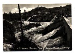 C3516 SAN SEVERINO MARCHE (MACERATA) - PONTE SANT'ANTONIO E CASCATE DEL POTENZA B\N VG 1956 - ED. M PERTICARARI TABACCHI - Andere Steden
