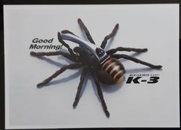 Spider Carte Postale - Publicidad