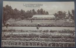 NOIRMONT - Oeuvre Nationale De L'Enfance - Colonie De CORTIL CHASTRE - Les Travaux De Jardinage -Circulé: 1922-2 Scans. - Chastre