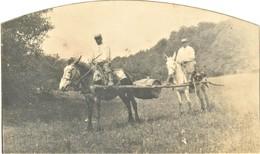 PHOTO FRANÇAISE - CORVÉE D'EAU AVEC MULETS A LA CENSE - HAMEAU DE CHEVINCOURT PRES DE COMPIEGNE OISE - GUERRE 1914 1918 - 1914-18