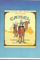 CARTE POSTALE TINTIN PUB CAMEL (45) - Postcards