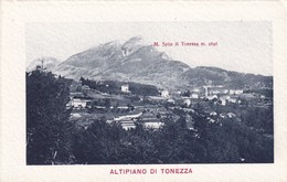 Cartolina ALTIPIANI DI TONEZZA. 1920 Ca. - Italia