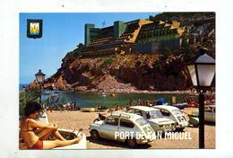 Carte Ibiza Flamme Theme Voiture - Autres