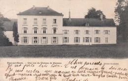 Belgique - Hainaut - Ham Sur Heure : Vue Du Château De Hameau - CPA écrite - Autres
