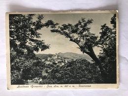 ARCIDOSSO GROSSETO PANORAMA- VIAGGIATA 1952 - Grosseto