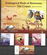 BOTSWANA, 2019, MNH, BIRDS, CRANES , 4v+S/SHEET - Kraanvogels En Kraanvogelachtigen