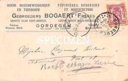 Gebroeders Bogaert Frères - Boom-Rozenkwekerijen En Tuinbouw  - Oordegem - Lede