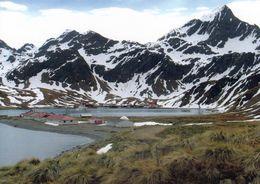 1 AK Antarctica South Georgia Island * Blick Auf King Edward Point - Im Hintergrund Grytviken Britisches Überseegebiet - Cartoline