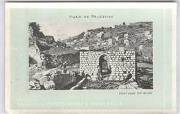 CPA  Palestine - Fontaine De Siloé - Non Circulée - Carte De La Chocolaterie D'Aiguebelle - Palestine