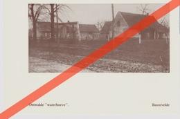 Gedrukte Fotografische Afbeelding - DUBBELZIJDIG BEDRUKT:  BASSEVELDE (ASSENEDE) -- OOSTDUINKERKE - Foto