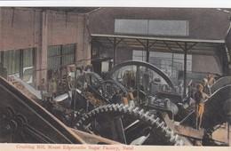 Natal - Crushing Mill, Mount Edgecombe Sugar Factory - Natal - Zuid-Afrika