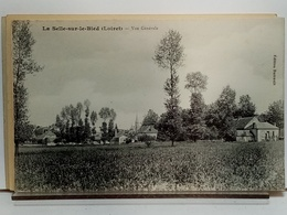 45 - LA SELLE SUR LE BIED - VUE GENERALE - Ed. BARRAULT - ETAT NEUF - Other Municipalities