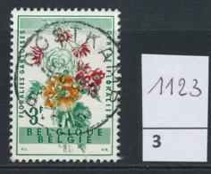 PRACHTSTEMPEL  Op Nr 1123 'Oostkamp' - Belgique