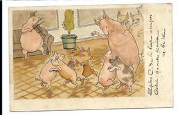 Thème COCHONS - Cochon Musicien Violon - Cochons Dansant (1904) - Cerdos