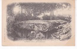 PLOERMEL(DOLMEN) - Dolmen & Menhirs