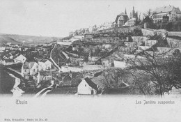 Thuin.   Les Jardins Suspendus.   Nels N° 42 - Thuin