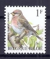 BELGIE * Buzin * Nr 2457 * Postfris Xx * FLUOR PAPIER - WITTE GOM - 1985-.. Oiseaux (Buzin)