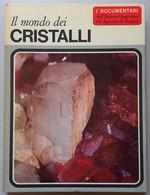 I DOCUMENTARI DE AGOSTINI-   IL MONDO DEI CRISTALLI  (290911) - Chasse Et Pêche