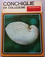 I DOCUMENTARI DE AGOSTINI-  CONCHIGLIE DA COLLEZIONE ( CART 72) - Hunting & Fishing