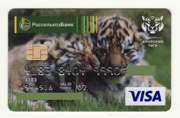 Agricultural Bank RUSSIA Siberian (Amur)Tigers VISA Expired - Cartes De Crédit (expiration Min. 10 Ans)