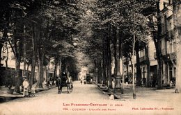 16642       LUCHON   L ALLEE DES BAINS - Luchon