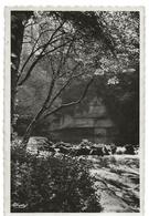 Chatillon Sur Seine : Source De La Douix (Collection Bolzé - Editeur Combier Imp. Macon, CIM) - Chatillon Sur Seine