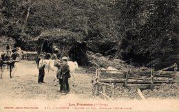 16649       LUCHON    VALLEE DU LYS COUR DE L HOTELLERIE - Luchon