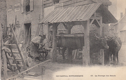 Le Cantal Pittoresque Le Ferrage Des Boeufs - Frankreich