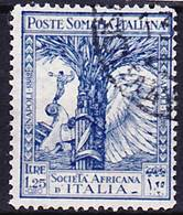Somalia Italiana 1928 Pro Società Africana Italiana Mi 119, Sassone 115 Used O - Somalie