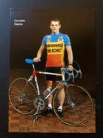 Corneille Daems - Transvemij Van Schilt  1987 - Carte / Card - Cyclists - Cyclisme - Ciclismo -wielrennen - Cyclisme