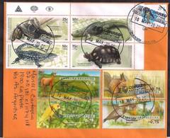 Argentina - 2020 - Lettre - Faune -  Reptiles (Yacare, Boa, Lagarto Y Tortuga) - Timbre Diverse - Argentine