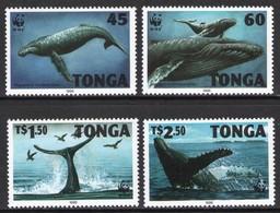 Tonga 1996 MiNr. 1400 - 1403  WWF Marine Mammals Humpback Whale 4v  MNH** 22,00 € - W.W.F.