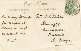 Jersey / Postcards / G.B. / Dogs / Carnivals - 1902-1951 (Kings)