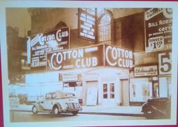 Cotton Club - Harlem
