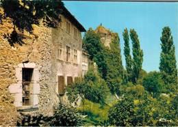 Vinay Le Chateau De La Blache  CPM Ou CPSM - Vinay