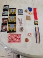 16692  MILITARIA LOT INSIGNES-DECORATIONS DIVERS CIVILS OU MILITAIRES - Médailles & Décorations