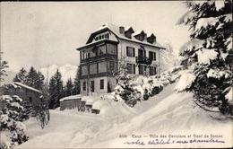 Cp Caux Montreux Kanton Waadt, Villa Des Cerisiers Et Dent Jaman - VD Vaud