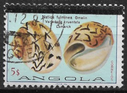 Angola – 1981 Shells 5$ Used Stamp - Angola