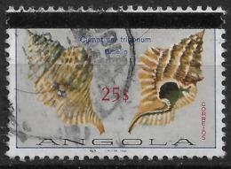 Angola – 1981 Shells 25$ Used Stamp - Angola