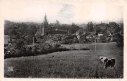Civray (86) - Panorama - Vue De Civray - Civray