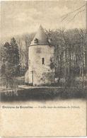 Dilbeek  *  Environs De Bruxelles - Vieille Tour Du Chateau De Dilbeek (Nels, 238) - Dilbeek