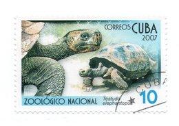CUBA»2007»USED - Oblitérés