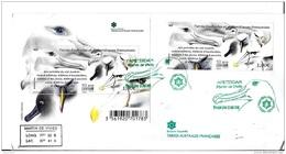 G 356 - Enveloppe TAAF Bloc/timbre Albatros Oblit Spéciale 1er Jour Amsterdam 2016 - Albatro & Uccelli Marini